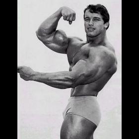 Arnold Schwarzenegger - Foto 44